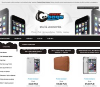 Laptop Bags – the best and most interesting Polish online store