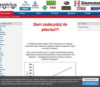 Motrius.pl – Automotive Polish online store