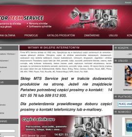Mts-service.pl – Automotive Polish online store